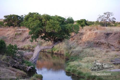 Barrancos y ríos suelen formar paisajes muy fotogénicos.