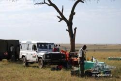 Es raro en Masai Mara encontrar un lugar dónde puedas bajarte del coche sin peligro.