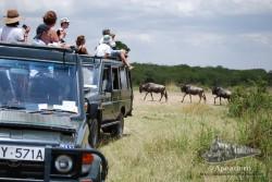 """Lo único """"bueno"""" que tienen los safaris de lujo es que te llevan a lugares dónde otros (las furgonetillas) no llegan."""