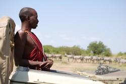 Si el masai va muy limpio y con ropa muy llamativa: sospecha.