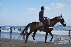 La playa de Chennai es tan grande que algunos jinetes te ofrecen llevarte hasta la orilla a caballo.