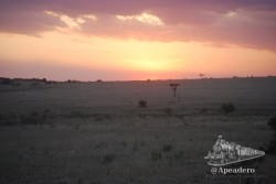 Atardecer en Masai Mara, otro de los espectáculos.