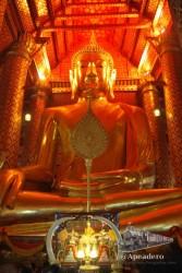 Buda dorado dentro de un templo. Fíjate en el tamaño de las cabezas de la parte inferior de la foto.