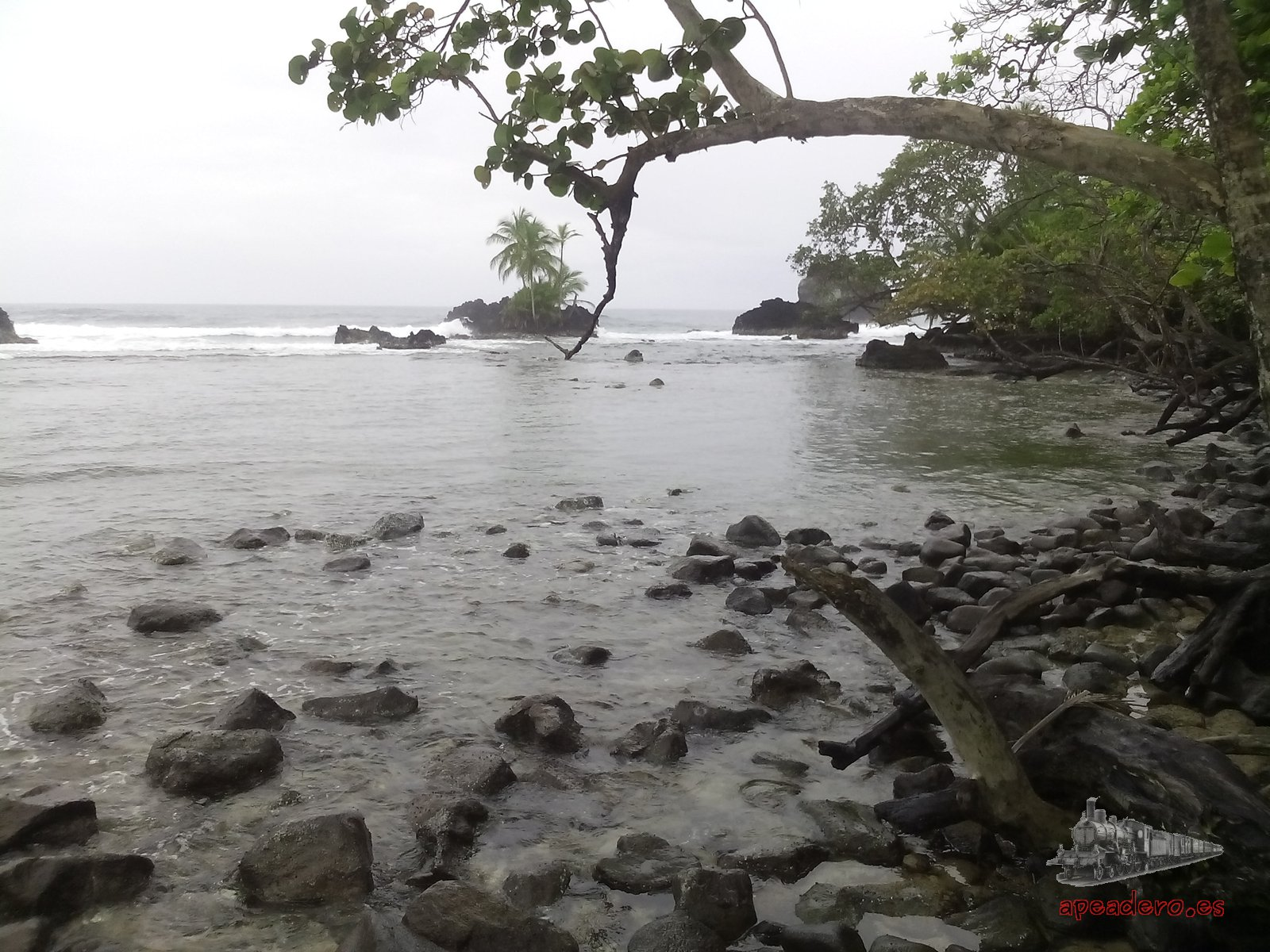 Bocas del Toro (Panamá)