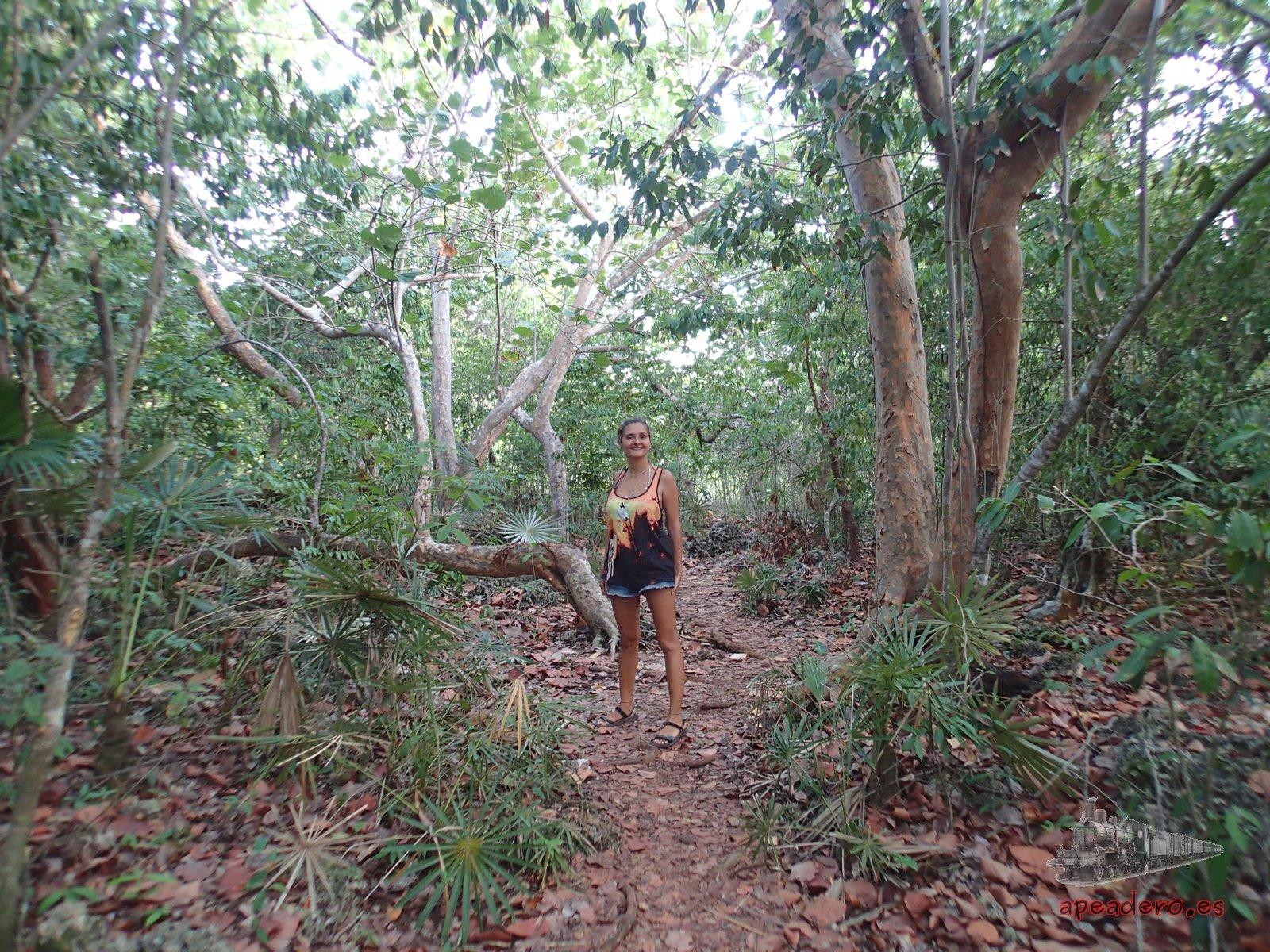 Qué hacer y qué ver gratis en Baracoa: senderismo