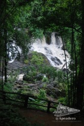 Las cataratas de Pa Sau enclavadas en medio de un bosque son un espectáculo maravilloso.