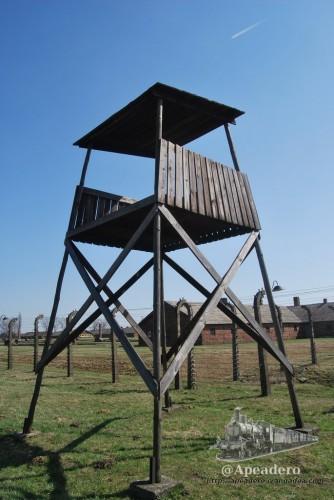 Decir Auschwitz es decir campo de concentración, prisión, nazis, genocidio...