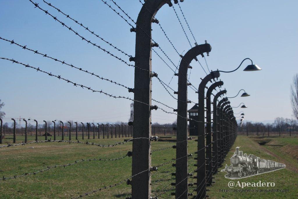Yo me escapé de Auschwitz