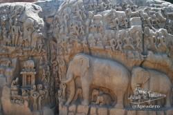 Estos son algunos de los famosos grabados de Mamallapuram.
