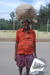 La gente te pide que le hagas fotos. Es algo realmente curioso de la India.