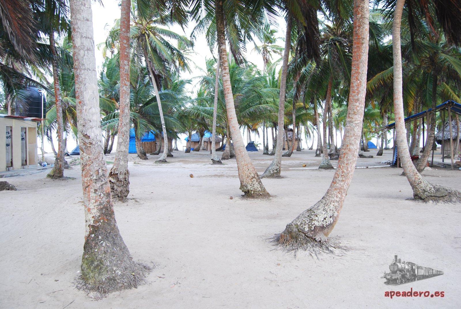 Isla Perro Chico: la mejor isla de San Blas