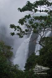 Las Jog Falls son las cataratas más espectaculares que hemos visto hasta la fecha si exceptuamos las de Iguazú.