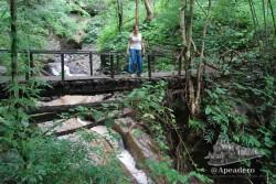 Si simplemente quieres dar un paseo por la jungla no hace falta que pagues a nadie, sal a pasear, la jungla está ahí al lado. Solo si quieres trekkings de varios días o en ciertos lugares especiales necesitarás contratar a un guía.