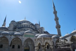 "Está claro porque se llama ""mezquita azul""."