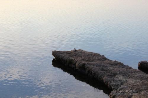 Momento zen en este embarcadero a los pies del lago Myvatn.