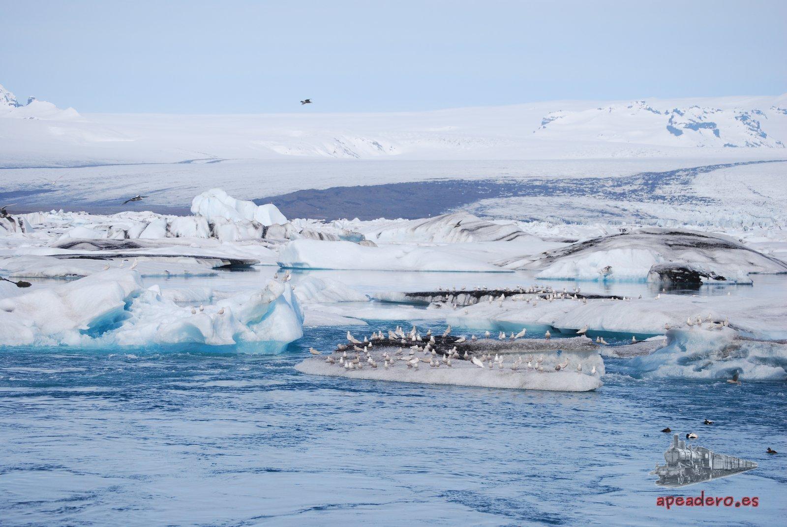 El día en el que nos subimos a los icebergs en Islandia