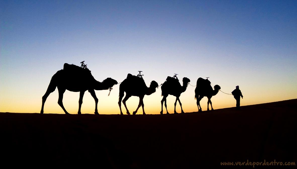 Un desierto como paraíso de bajo coste