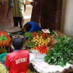Los viajeros más exigentes pueden ir al mercado a comprar directamente su comida.