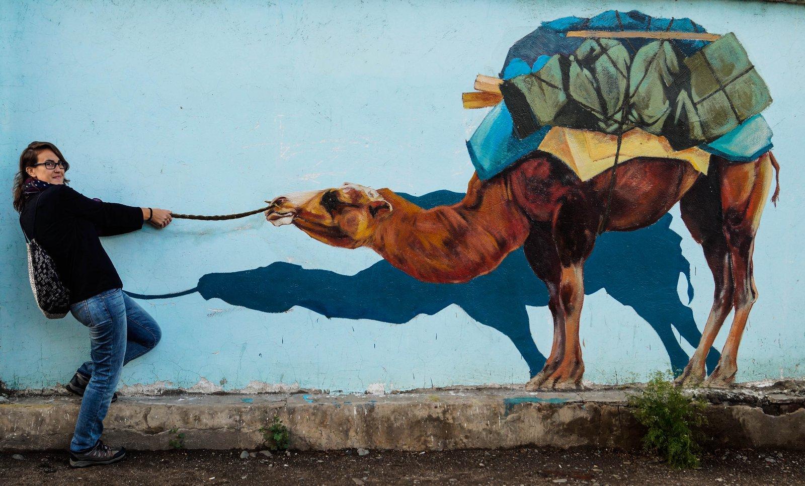 Nuestro diario de aventuras - Camello