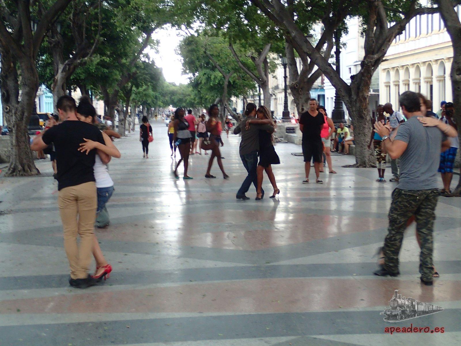 En el paseo del Prado los domingos se pueden encontrar todo tipo de manifestaciones artísticas... si no llueve, claro.