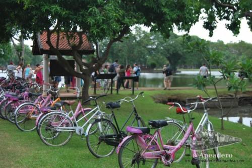 Aunque la opción de alquilar una bicicleta es la más barata, en los días más calurosos puede ser muy duro pedalear por el recinto.