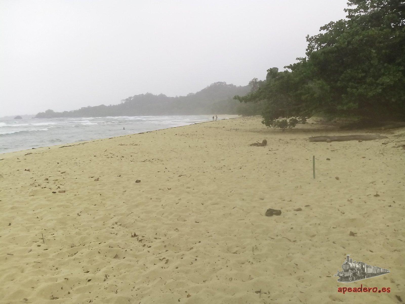La playa Wizard tiene varios kilómetros de longitud, lo cual te asegura que nadie te va a molestar.