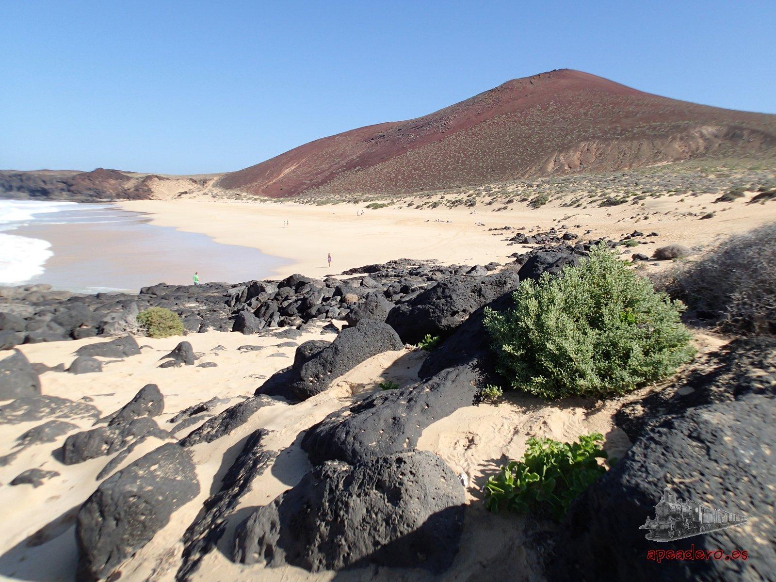 Podrás visitar la Playa de Las Conchas en la Graciosa si acampas gratis en la isla