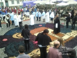 La noche anterior, unas hordas de trabajadores engalanaron los suelos con pétalos de flor para la procesión.