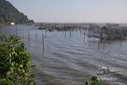 En el fondo, esta ciudad vive de la pesca, igual que muchos de los pueblos que la circundan.