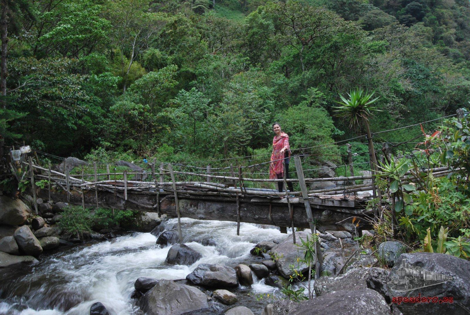Para acceder a algunas casas y a determinadas plantaciones de café, quizás tengas que cruzar puentes en condiciones más precarias.