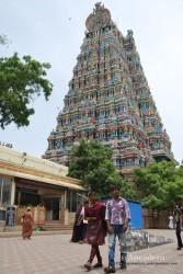 El templo de Madurai es lo único de relevancia que hay que ver en la ciudad.