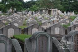 En el mismo pueblo de Kanchanaburi es posible visitar el cementerio de los japoneses que murieron aquí.